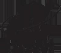 brc-logo-black-300dpi